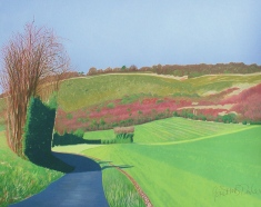 Janet Darley, Spekes' Bottom, Darland Banks, early March