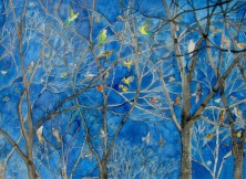 Anne Haworth, 'Birds in Trees'