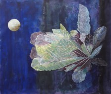 Janis Fry, 'Cabbage by Moonlight'