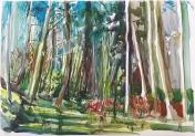 'Quivering Woodland', Chloe Le Tissier, 2016 exhibitor