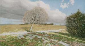 Michael Williams, 'Leaning Tree and a Little Snow'