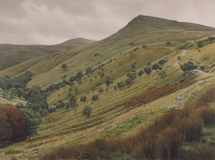 Roger Allen, 'The Pennine Bridleway near Hayfield', £2,000