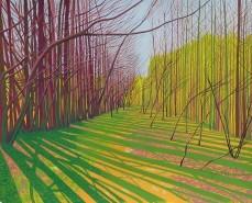 Janet Darley, 'Warren Woods, Kings Hill', £550
