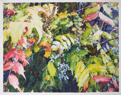 Jan Symes, 'Gerrish's Mahonia', £1,500